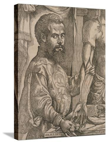 Andreas Vesalius Dissecting the Muscles of the Forearm of a Cadaver, 1543-Steven van Calcar-Stretched Canvas Print