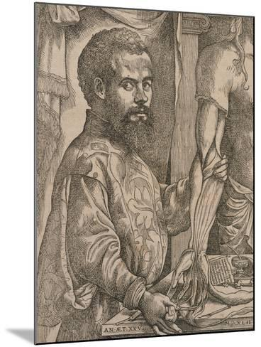 Andreas Vesalius Dissecting the Muscles of the Forearm of a Cadaver, 1543-Steven van Calcar-Mounted Giclee Print