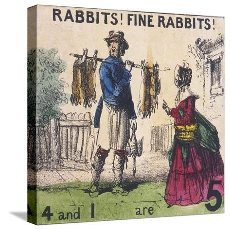 Rabbits! Fine Rabbits!, Cries of London, C1840-TH Jones-Stretched Canvas Print
