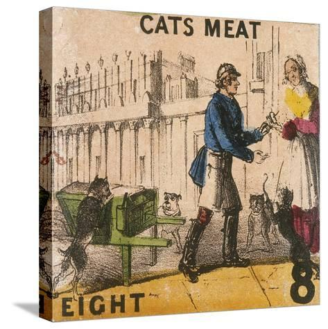 Cats Meat, Cries of London, C1840-TH Jones-Stretched Canvas Print