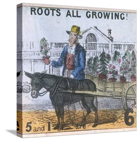 Roots All Growing!, Cries of London, C1840-TH Jones-Stretched Canvas Print