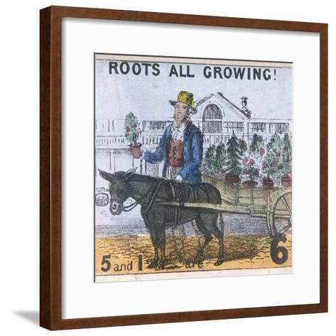 Roots All Growing!, Cries of London, C1840-TH Jones-Framed Art Print
