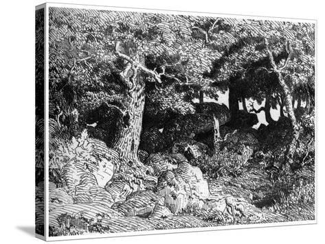 Les Chenes De Roche, C1832- 1860-Theodore Rousseau-Stretched Canvas Print