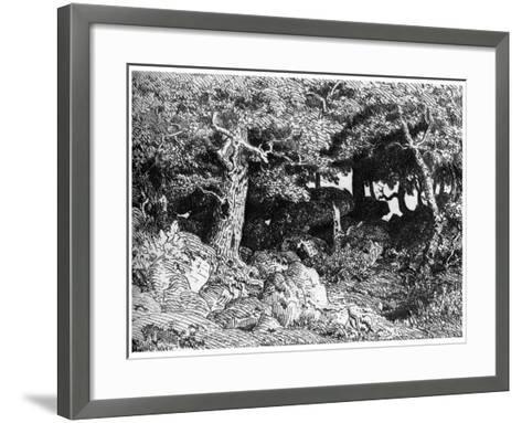 Les Chenes De Roche, C1832- 1860-Theodore Rousseau-Framed Art Print