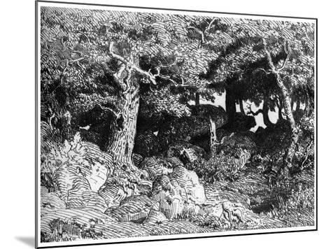 Les Chenes De Roche, C1832- 1860-Theodore Rousseau-Mounted Giclee Print