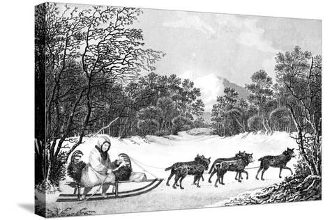 The Manner of Travelling in Winter in Kamtschatka, 19th Century- Sparrow-Stretched Canvas Print