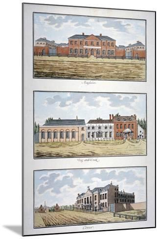 Three Buildings in St George's Fields, Southwark, London, C1790-Thomas Trotter-Mounted Giclee Print