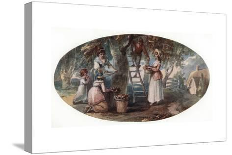 Gathering Fruit, Late 18th Century-William Hamilton-Stretched Canvas Print