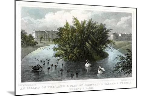 Island on the Lake and Part of Cornwall and Clarence Terraces, Regent's Park, London, 1828-William Tombleson-Mounted Giclee Print