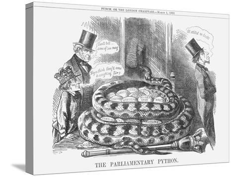 The Parliamentary Python, 1862--Stretched Canvas Print