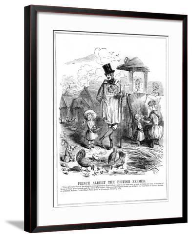 Prince Albert the British Farmer, 1843--Framed Art Print