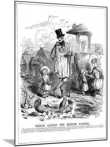 Prince Albert the British Farmer, 1843--Mounted Giclee Print