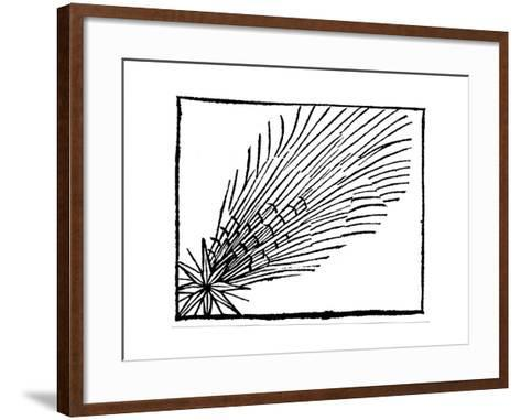 Comet of 684 (Halle), 1493--Framed Art Print