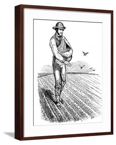 Crop Rotation: Sowing Seed Broadcast, 1855--Framed Art Print