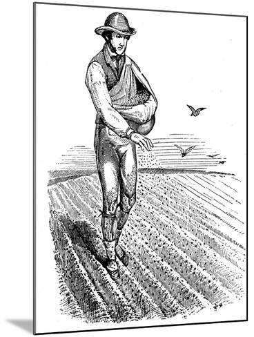 Crop Rotation: Sowing Seed Broadcast, 1855--Mounted Giclee Print