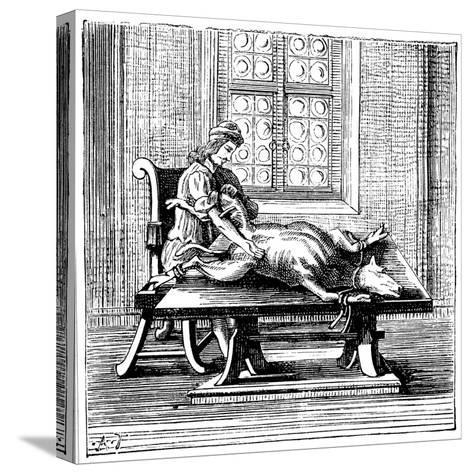 Animal-To-Human Blood Transfusion, 1679--Stretched Canvas Print