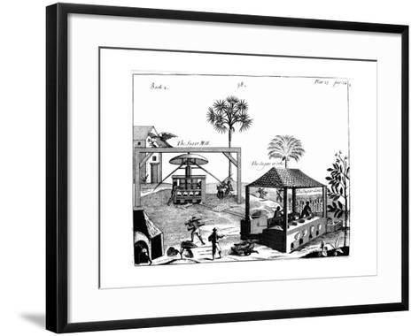 Slave Labour on a Sugar Plantation in the West Indies, 1725--Framed Art Print