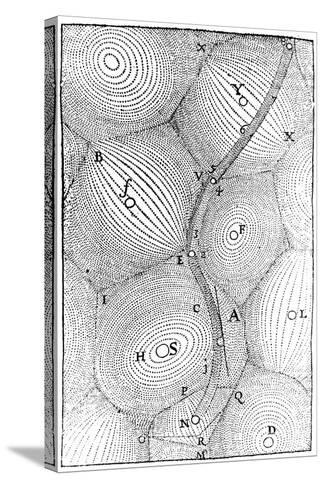 Rene Descartes Model of the Structure of the Universe, 1668--Stretched Canvas Print
