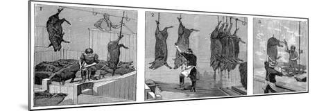Armour Company's Pig Slaughterhouse, Chicago, Illinois, USA, 1892--Mounted Giclee Print