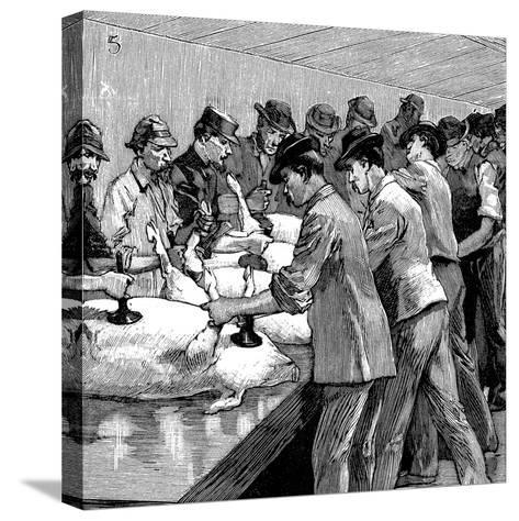 Armour Company's Pig Slaughterhouse, Chicago, Illinois, USA, 1892--Stretched Canvas Print