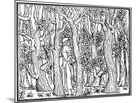 The Lover in the Wood, 1499--Mounted Giclee Print