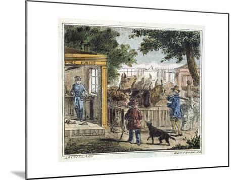 Public Weighbridge Used to Weigh Cattle in a Market, 1867--Mounted Giclee Print
