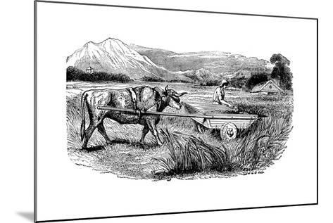 Reconstruction of Roman Reaping Cart, as Described by Pliny, Engraving, 1860--Mounted Giclee Print