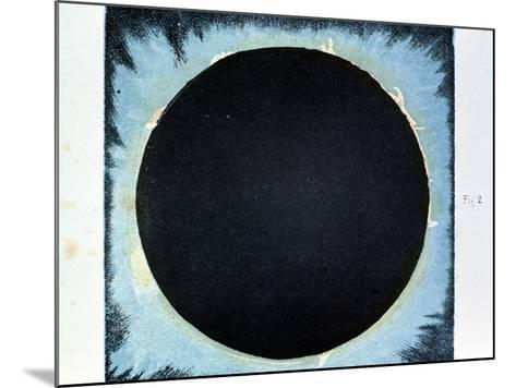 Solar Corona and Prominences 1860--Mounted Giclee Print