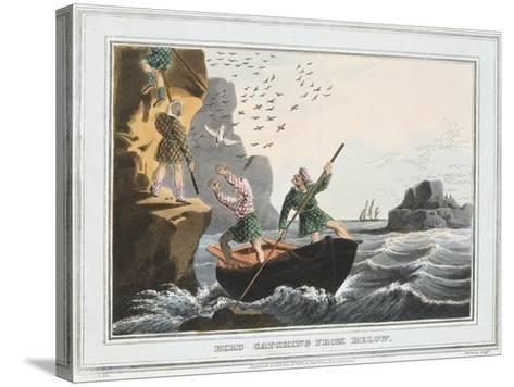 Bird Catching from Below, Shetland Islands, 1813-JH Clarke-Stretched Canvas Print