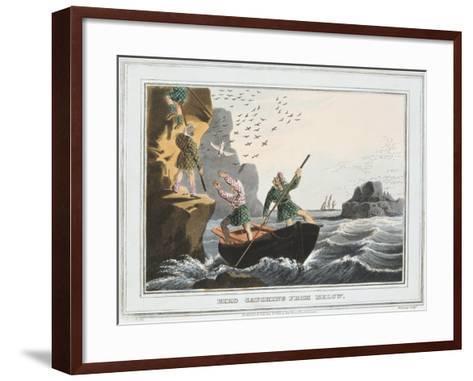 Bird Catching from Below, Shetland Islands, 1813-JH Clarke-Framed Art Print