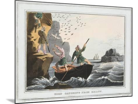 Bird Catching from Below, Shetland Islands, 1813-JH Clarke-Mounted Giclee Print