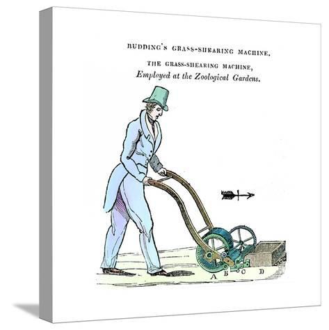 Budding's Grass-Shearing Machine, C1832--Stretched Canvas Print