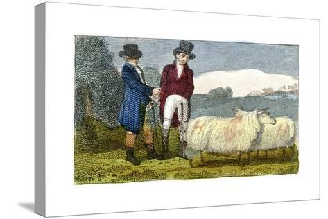 Farmers Discussing Dishley (New Leiceste) Sheep, 1822--Stretched Canvas Print