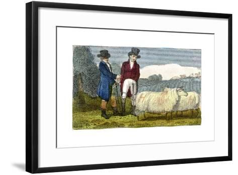Farmers Discussing Dishley (New Leiceste) Sheep, 1822--Framed Art Print