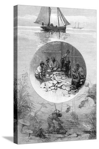 Pearl Fishery, Torres Strait, Australia, 1886--Stretched Canvas Print