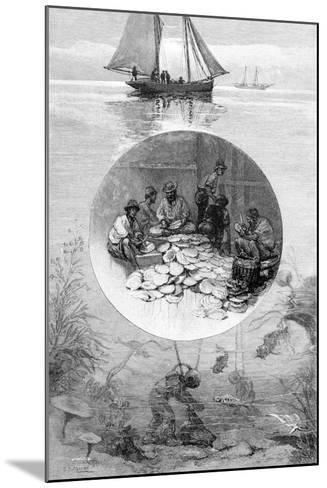 Pearl Fishery, Torres Strait, Australia, 1886--Mounted Giclee Print