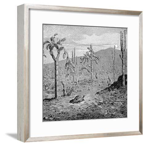 Indefatigable Island, Galapagos Archipelago, 1895--Framed Art Print