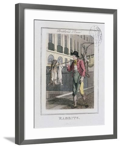 Rabbits, Cries of London, 1804-William Marshall Craig-Framed Art Print