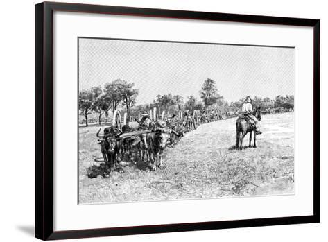 A Convoy of Wagons, South America, 1895--Framed Art Print