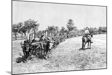 A Convoy of Wagons, South America, 1895--Mounted Giclee Print
