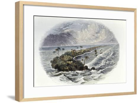 Coral Reef and Island--Framed Art Print