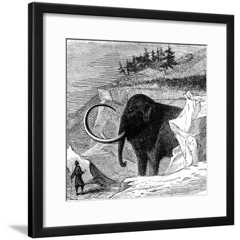 Discovery of a Woolly Mammoth, 1779--Framed Art Print