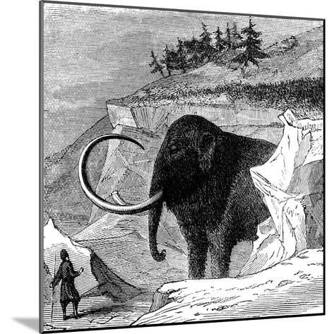 Discovery of a Woolly Mammoth, 1779--Mounted Giclee Print