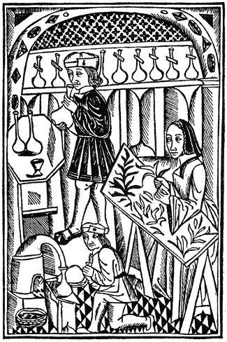 Illustration from Le Proprietaire Des Choses, 1500--Stretched Canvas Print
