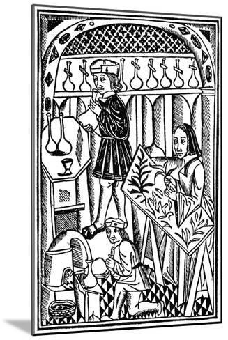 Illustration from Le Proprietaire Des Choses, 1500--Mounted Giclee Print