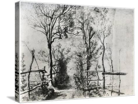 A Path Bordered by Trees, C1620-1625-Peter Paul Rubens-Stretched Canvas Print