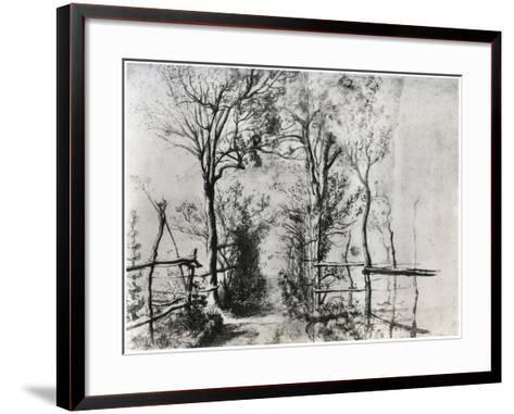 A Path Bordered by Trees, C1620-1625-Peter Paul Rubens-Framed Art Print