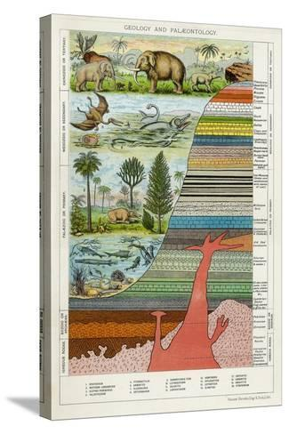 Geology and Palaeontology, C1880--Stretched Canvas Print