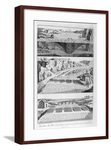 Salmon Fishing, 1751-1777--Framed Art Print