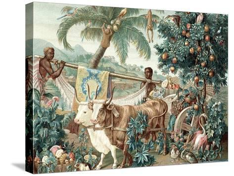 Wealth of the Indies, 17th Century--Stretched Canvas Print